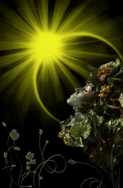 Creative Print Image of the Year<br /> Embraced By the Sun<br /> Nancy Springer