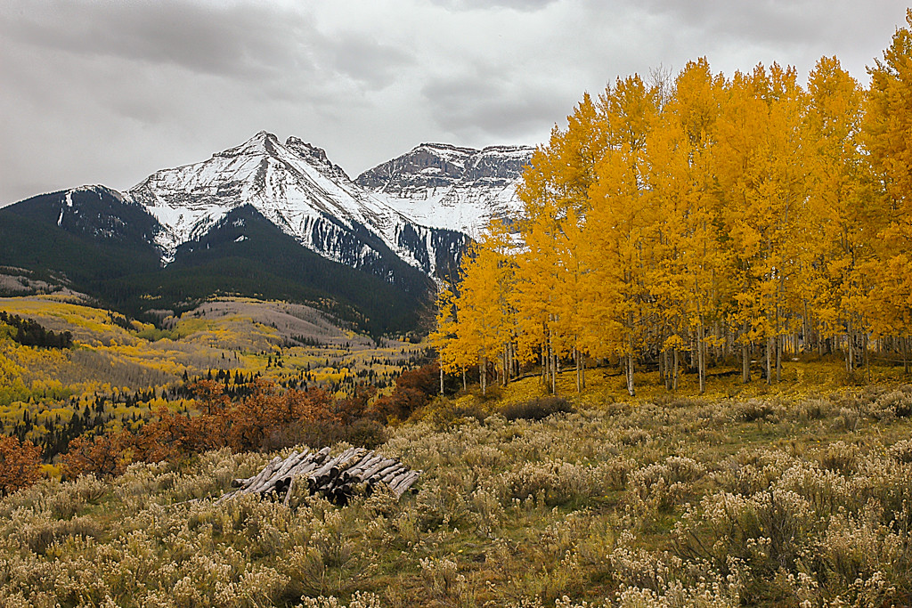 First Place<br /> Fall in the Sneffels Wilderness<br /> Kathy Sneed