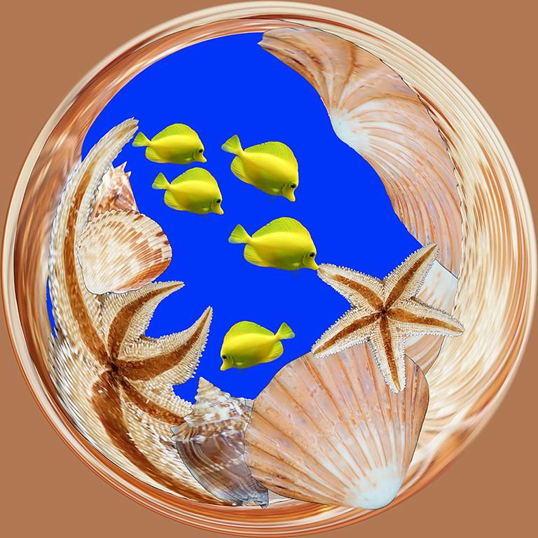 Second Place<br /> Fishbowl<br /> Della Landheer