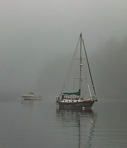 Hog Island Fog