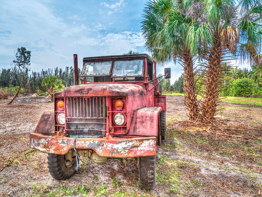 Old Deserted Truck<br /> Third Place (Tie)<br /> John Bortalametti