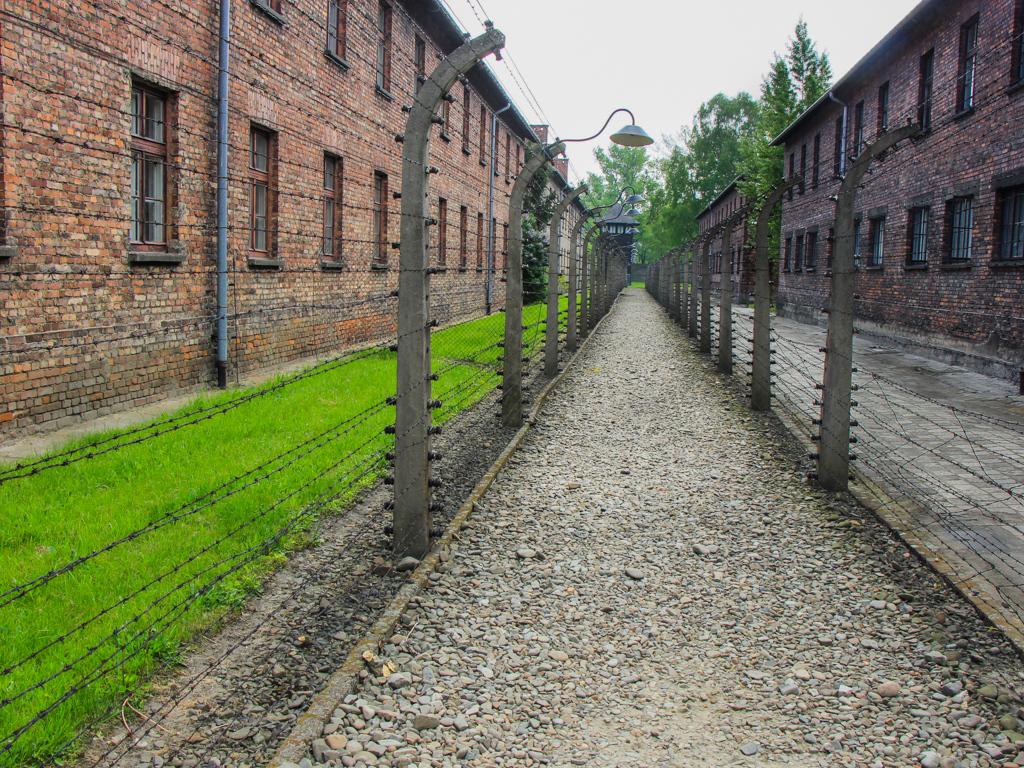 First Place (Tie)<br /> Death at Auschwitz<br /> Dave McFarlane