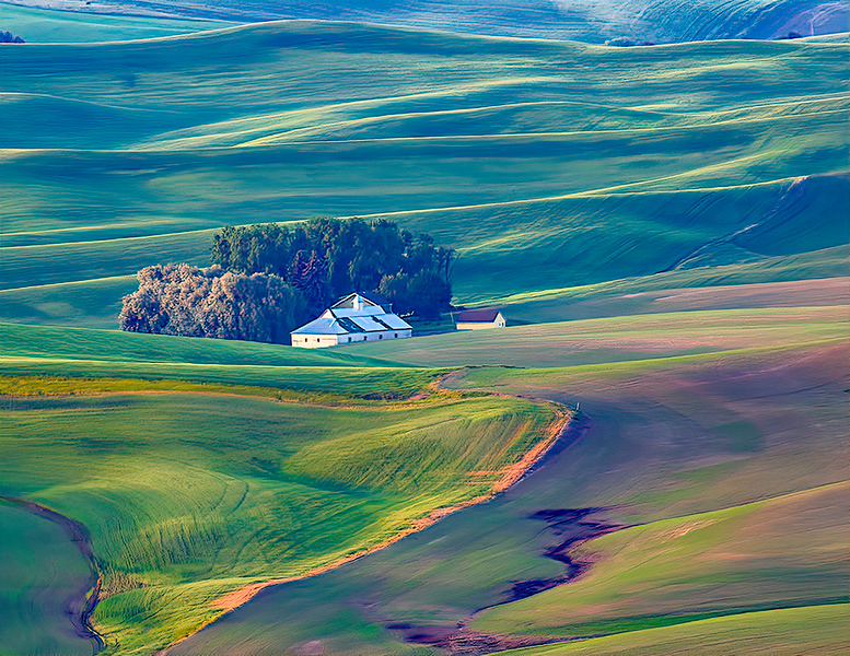 First Place<br /> Colors of the Palouse<br /> Nancy Springer