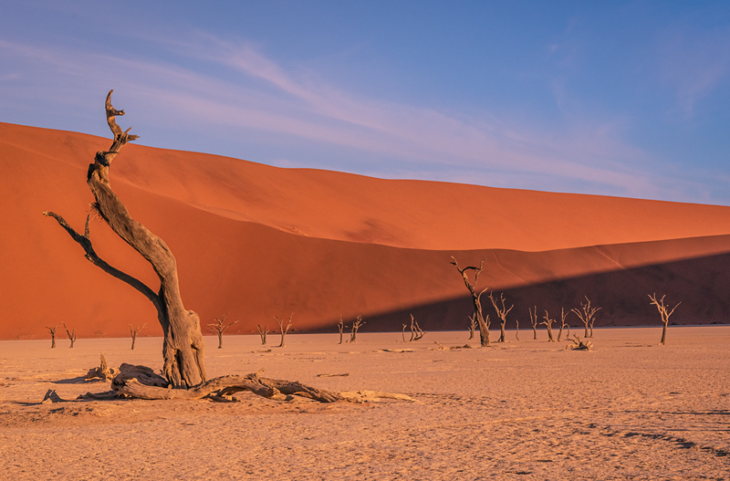 Third Place<br /> Dead Vlei Morning<br /> Greg Presely
