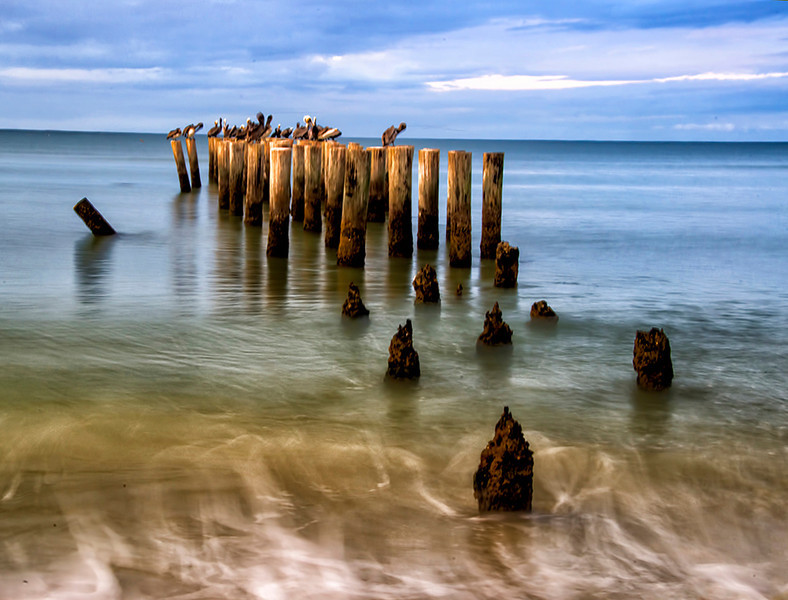 March<br /> Honorable Mention<br /> Projected Imaging (Open) Division<br /> Beach Pilings<br /> Ed Cohen