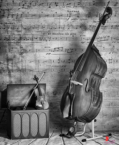 Let the Music Speak