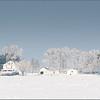 Dave Waycie - Prairie Winter
