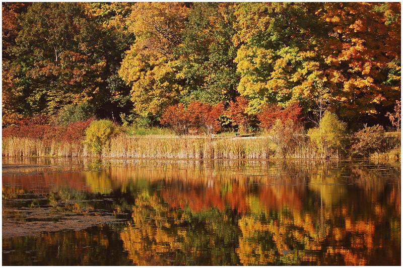Fall Reflection<br /> Bob Ungar