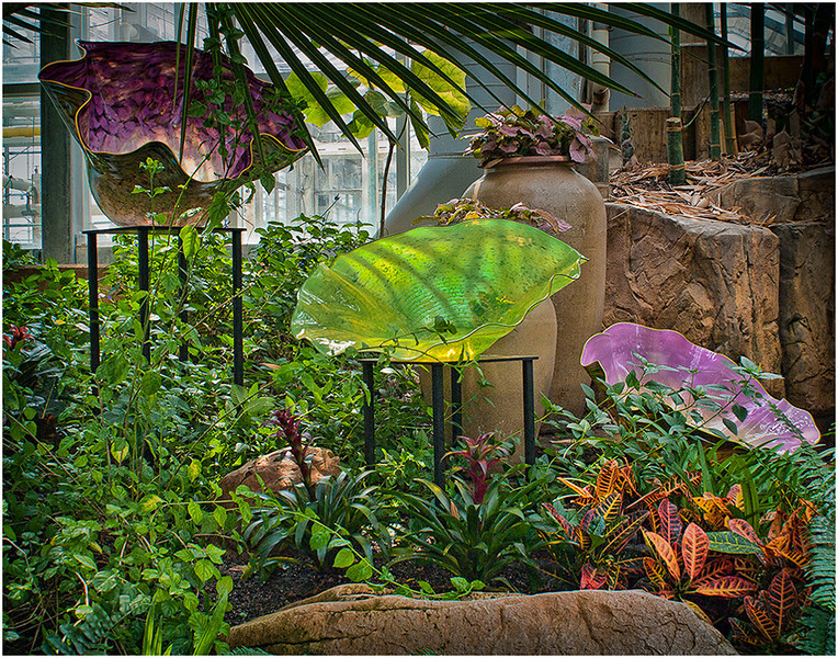 Chihuly Blossoms in Conservatory<br /> Wes Kiel