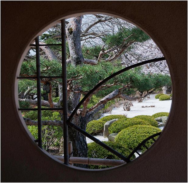 Garden Window<br /> Dave Waycie