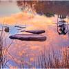 Sunrise Reflections<br /> Bill Bishoff