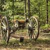 Napolean Cannon - Robert Erickson