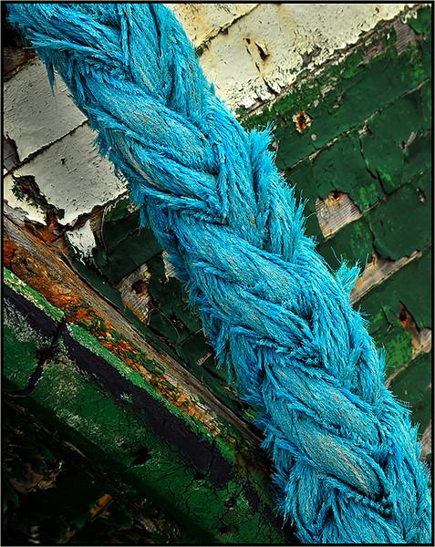 Blue Rope - Marie Rakoczy