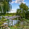 Bridge to Japan - Dave Waycie