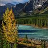 Athabasca Valley - Marie Rakoczy