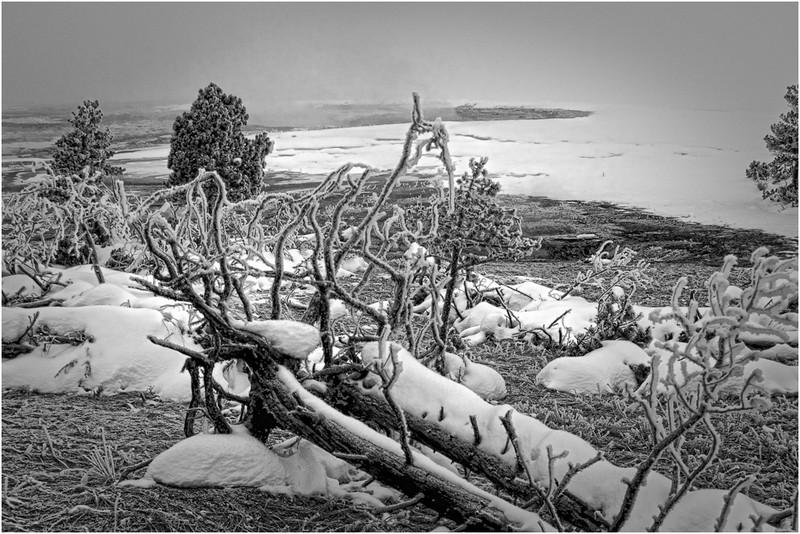 Wesley Kiel - Yellowstone Winter Scene