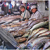 Bill Bishoff - Santiago Fish Market