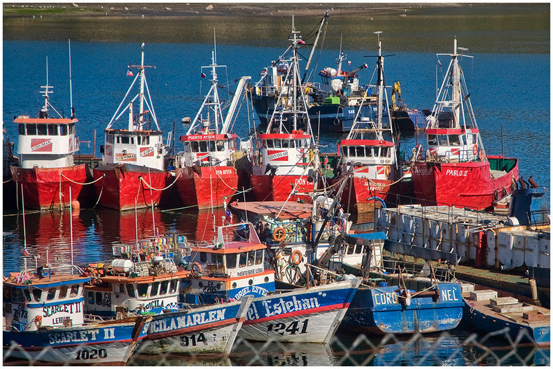 Bill Bishoff - Porto Montt Salmon Fishing Boats