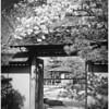 Zen Gate - Larry Michalski