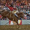 Rodeo<br /> Joe Tarlos