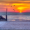 Wilmette Harbor Sunrise<br /> Bill Bishoff