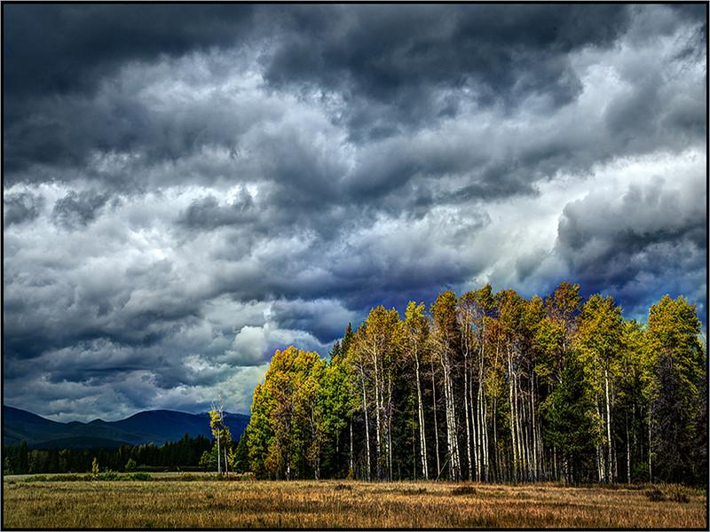 Stormy Skies - Marie Rakoczy
