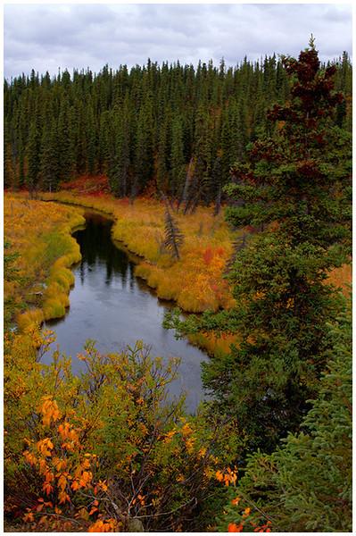 Alaskan Stream<br /> Tom Mulick