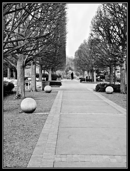 Walk in the Fall<br /> Pat Turner