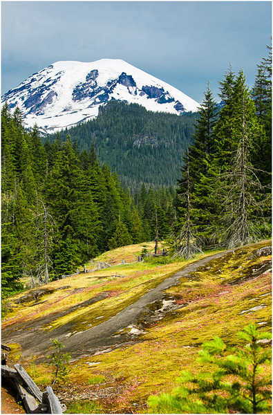 Mountain and Meadow<br /> Dave Waycie