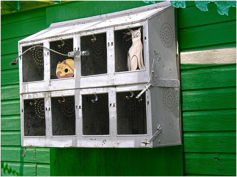 Display Window<br /> Irene Szilagyi