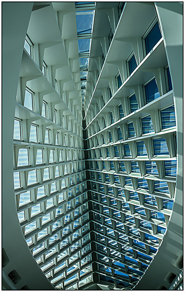 Mirror Image<br /> Jane Ballengee