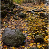 Autumn in the Gorge<br /> Theresa Hart