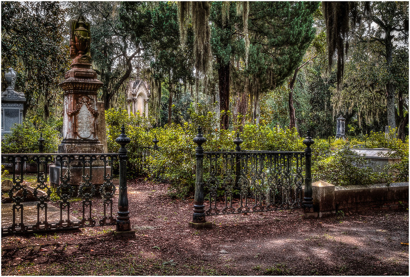 Southern Gothic<br /> Theresa Hart