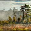 Washington Island Fog - Marie Rakoczy
