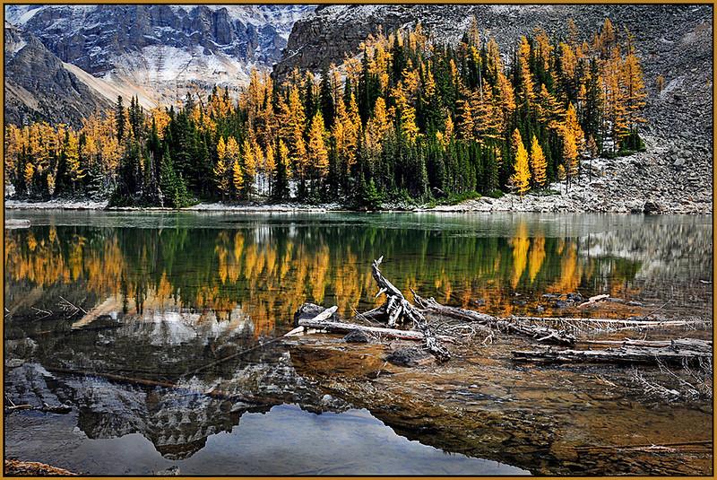 Schaeffer Lake Reflections - Marie Rakoczy