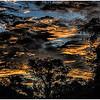Nightfall - Jane Ballengee