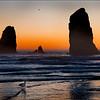 Cannon Beach - John Kowalyk