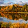 Otto Lake Alaska<br /> Tom Mulick