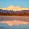 Denali Reflected in Morning Light<br /> Tom Mulick
