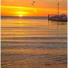 Gilson Park Sunrise<br /> Bill Bishoff
