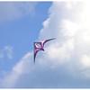 High in the Sky<br /> Miriam Kravis