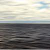 Still waters<br /> Suzanne Maso