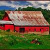 Summer on the Farm<br /> Marie Rakoczy