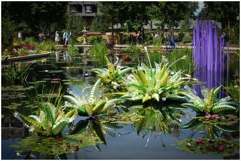A Pond of Glass and Foliage - Wes Kiel