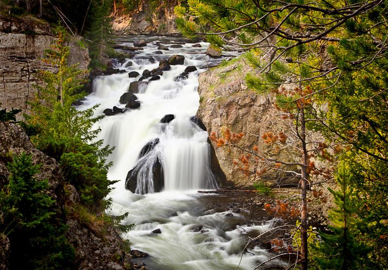 Fire River Fall - Tom Wilson