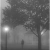 Foggy Morn - Dave Waycie