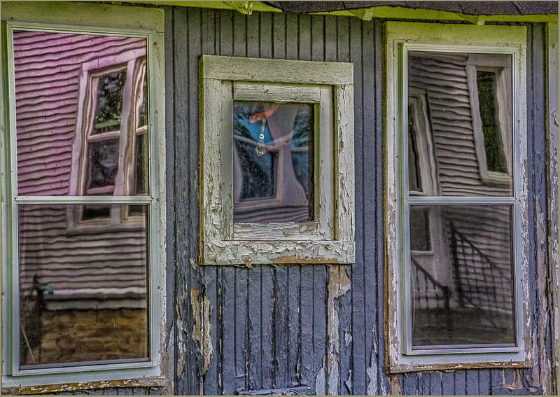 Windows to the Farmyard - Diane Hamernik