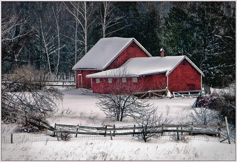 Snowy Farm - Joe Rakoczy