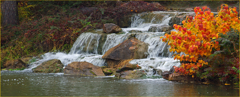 Cascading Waterfall - John Peterson<br /> Print of the Month - January 2014