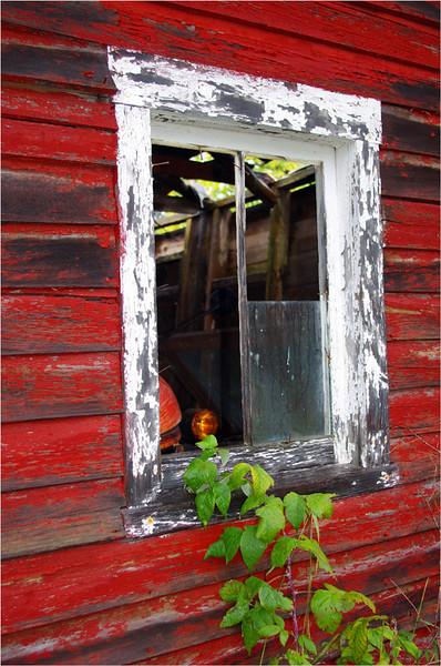 Framed in Red - John Peterson